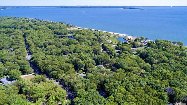 40 Brander Parkway, Shelter Island, NY 11964 (MLS #3199970) :: Frank Schiavone with William Raveis Real Estate