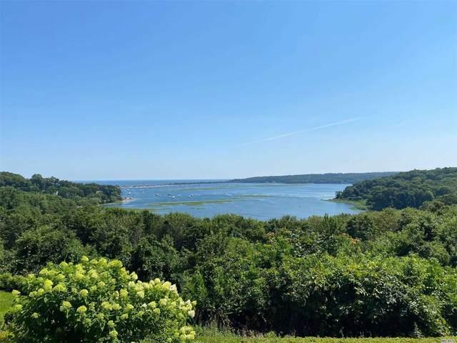 9 Watersedge Way, Port Jefferson, NY 11777 (MLS #3238042) :: Mark Seiden Real Estate Team