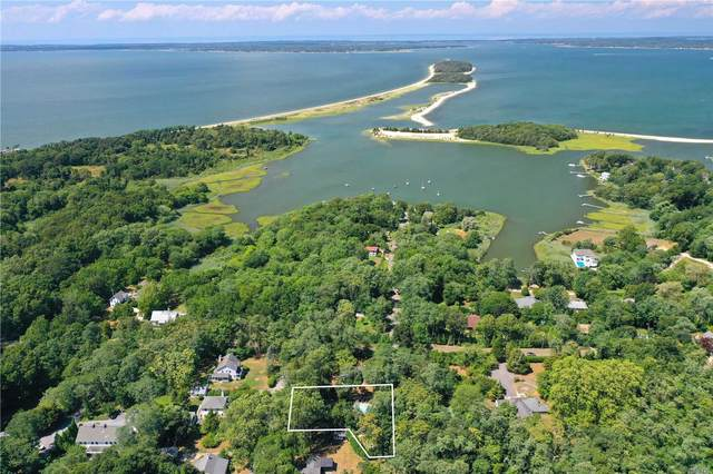 10 Oak Lane, Sag Harbor, NY 11963 (MLS #3239810) :: Frank Schiavone with William Raveis Real Estate
