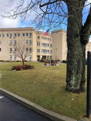 270 Lowndes Avenue #412, Huntington Sta, NY 11746 (MLS #3290796) :: Signature Premier Properties
