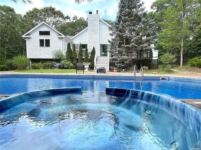 12 Douglas Court, Hampton Bays, NY 11946 (MLS #3325419) :: Kendall Group Real Estate | Keller Williams