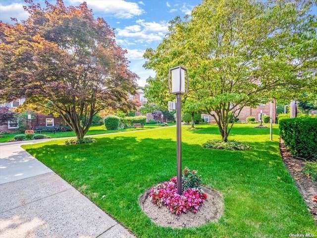 200 N Village Avenue E D8, Rockville Centre, NY 11570 (MLS #3326821) :: Howard Hanna | Rand Realty