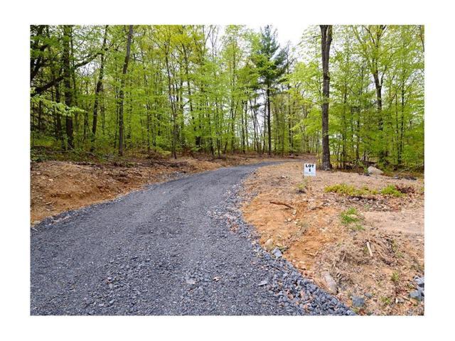 381 Walker Valley Road, Pine Bush, NY 12566 (MLS #4423635) :: Mark Boyland Real Estate Team