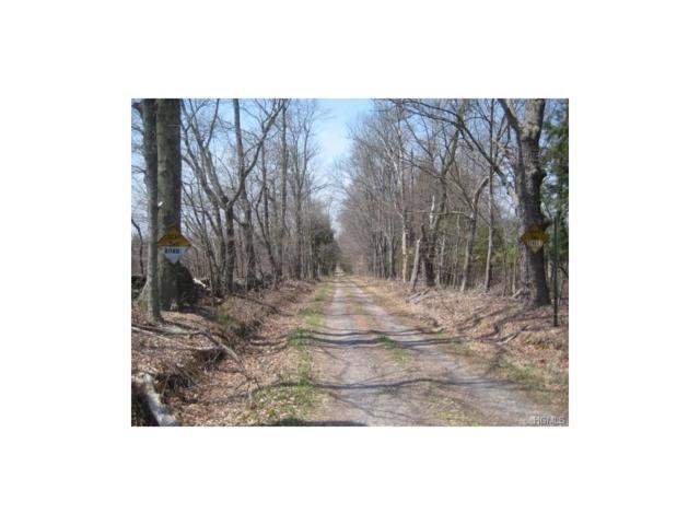 Gartner Road, Monticello, NY 12701 (MLS #4527330) :: Mark Boyland Real Estate Team