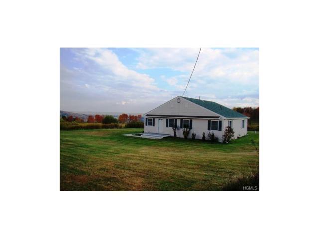 604 Beechwoods Road, Callicoon, NY 12723 (MLS #4540120) :: Mark Boyland Real Estate Team