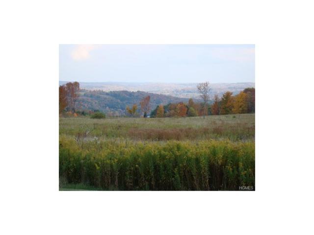 Beechwoods Road, Callicoon, NY 12723 (MLS #4540379) :: Mark Boyland Real Estate Team