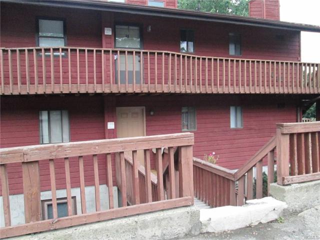 39 Berwynn Road 8-B, Harriman, NY 10926 (MLS #4637184) :: Mark Boyland Real Estate Team