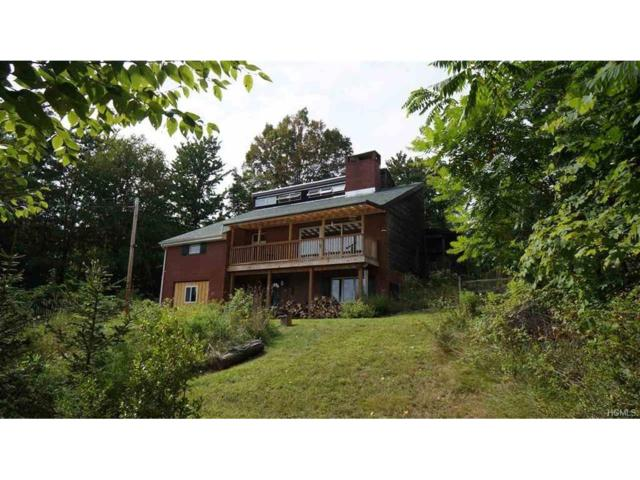 7 Dean Road, Napanoch, NY 12458 (MLS #4725277) :: Mark Boyland Real Estate Team