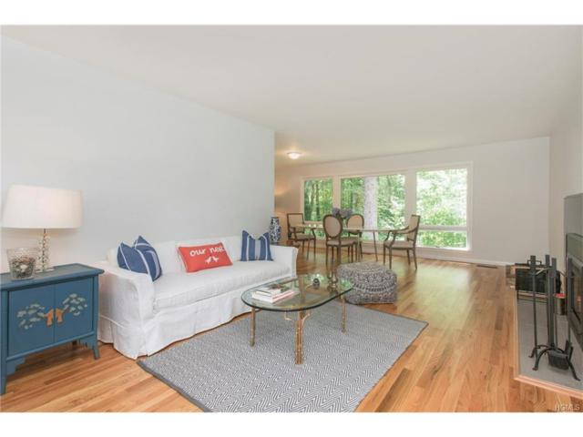 29 Swan Street, Palisades, NY 10964 (MLS #4733004) :: William Raveis Baer & McIntosh