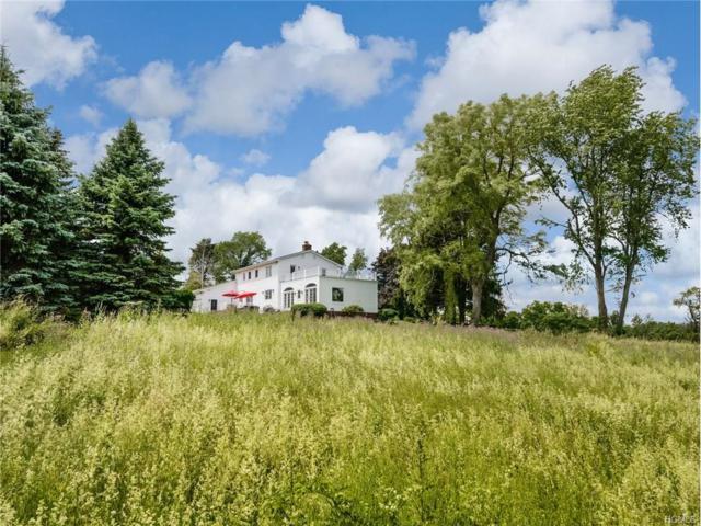 450 N Tower Hill Road, Millbrook, NY 12545 (MLS #4733226) :: Mark Boyland Real Estate Team