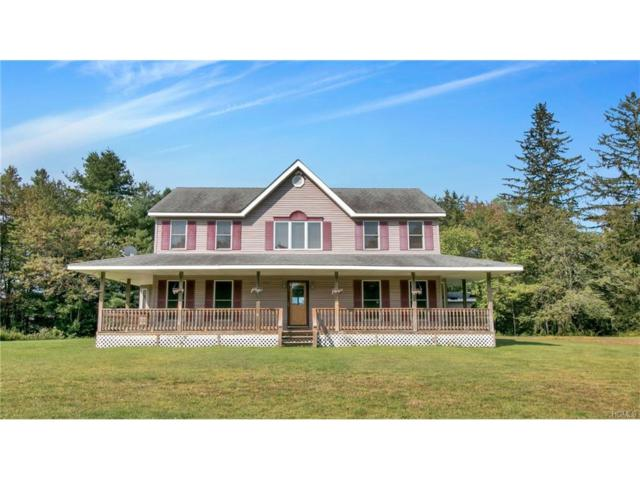 303 Amber Lake Road, Livingston Manor, NY 12758 (MLS #4736764) :: Michael Edmond Team at Keller Williams NY Realty