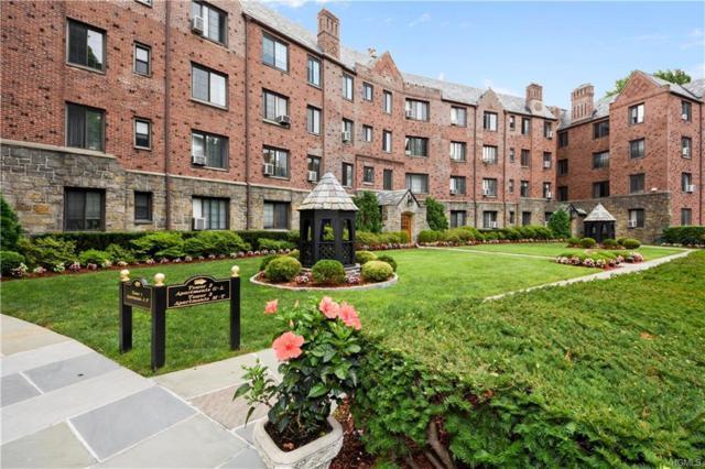 914 Wynnewood Road 3D, Pelham, NY 10803 (MLS #4737611) :: Mark Boyland Real Estate Team