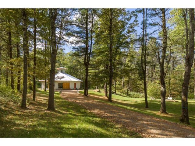 401 Collins Street, Call Listing Agent, NY 12529 (MLS #4738698) :: Stevens Realty Group