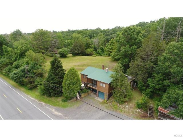 9451 Us Route 9W, Athens, NY 12015 (MLS #4743055) :: Shares of New York