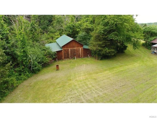 00 Us Route 9W, Athens, NY 12015 (MLS #4744410) :: Stevens Realty Group