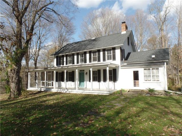 423 Clinton Hollow Road, Salt Point, NY 12578 (MLS #4747066) :: William Raveis Legends Realty Group