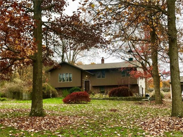 12 Rosaline Lane, Newburgh, NY 12550 (MLS #4748485) :: William Raveis Baer & McIntosh