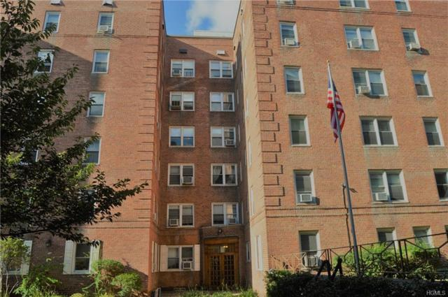 60 Locust Avenue 601A, New Rochelle, NY 10801 (MLS #4752411) :: William Raveis Baer & McIntosh