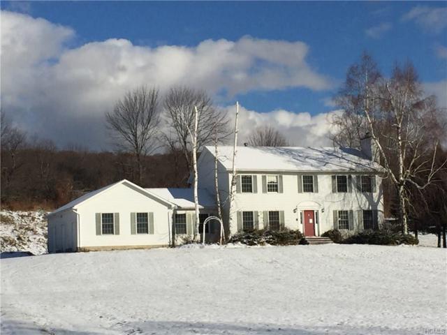 254 Walsh Road, Lagrangeville, NY 12540 (MLS #4752627) :: Mark Boyland Real Estate Team