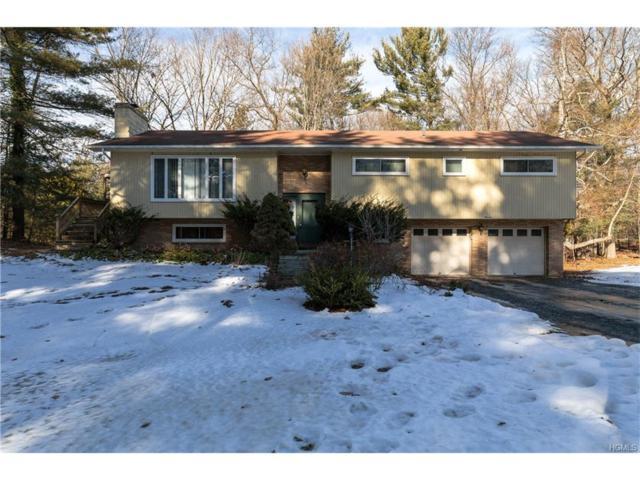 11 Spruce Road, Hyde Park, NY 12538 (MLS #4801796) :: Mark Boyland Real Estate Team