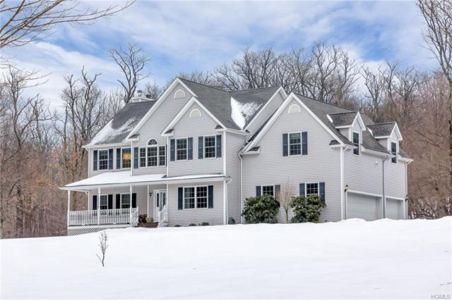 21 Breezy Hill Drive, Wingdale, NY 12594 (MLS #4805548) :: Mark Boyland Real Estate Team
