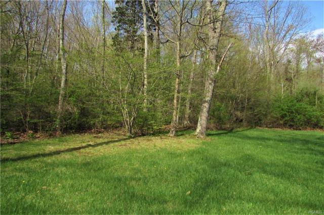 17 LOTS Cushman Farms, Pawling, NY 12564 (MLS #4809180) :: Michael Edmond Team at Keller Williams NY Realty