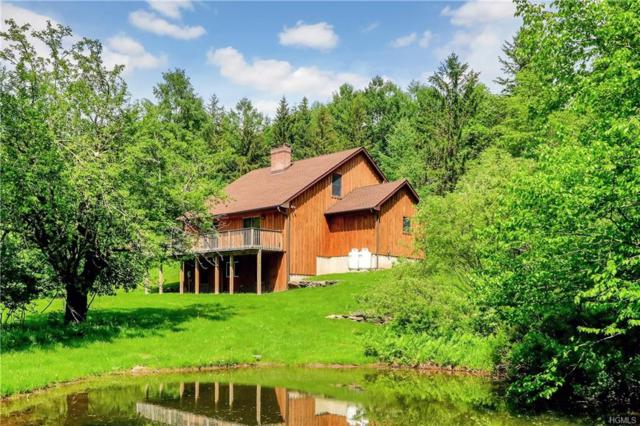 120 Alder Creek Road, Livingston Manor, NY 12758 (MLS #4810142) :: Mark Seiden Real Estate Team