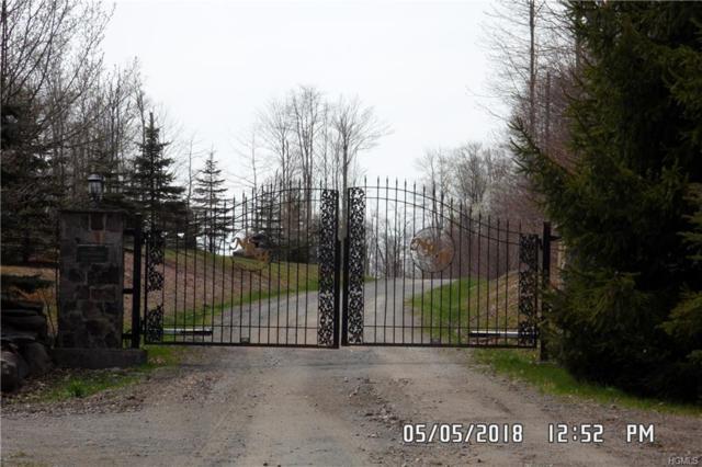 Hideaway Drive, Fallsburg, NY 12733 (MLS #4810901) :: Stevens Realty Group