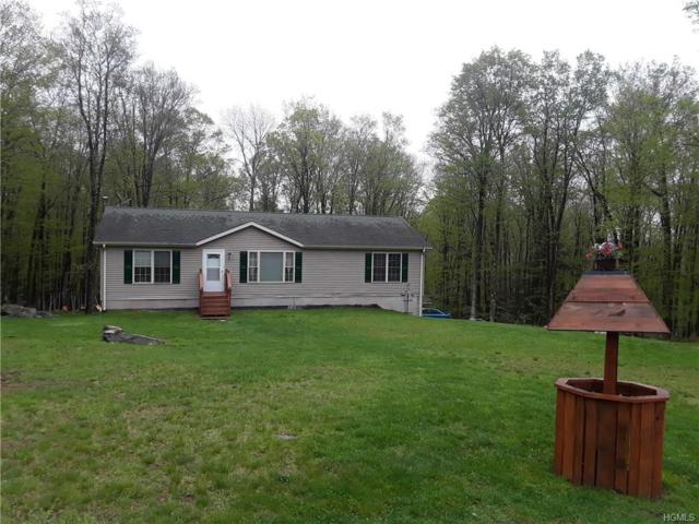 139 Gregory Road, Monticello, NY 12701 (MLS #4820482) :: Stevens Realty Group