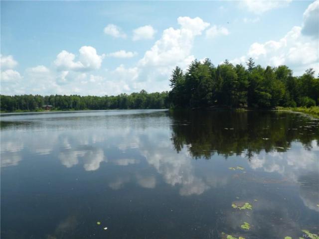Lot 18.24 Beaver Dam Road, Bethel, NY 12720 (MLS #4821332) :: Shares of New York