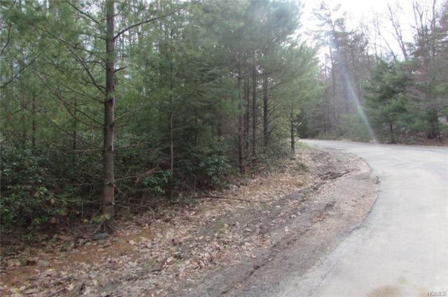 0 Mountain Top Road, Wurtsboro, NY 12790 (MLS #4822415) :: William Raveis Legends Realty Group