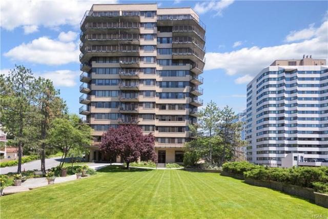 25 Rockledge Avenue #313, White Plains, NY 10601 (MLS #4823498) :: Mark Seiden Real Estate Team
