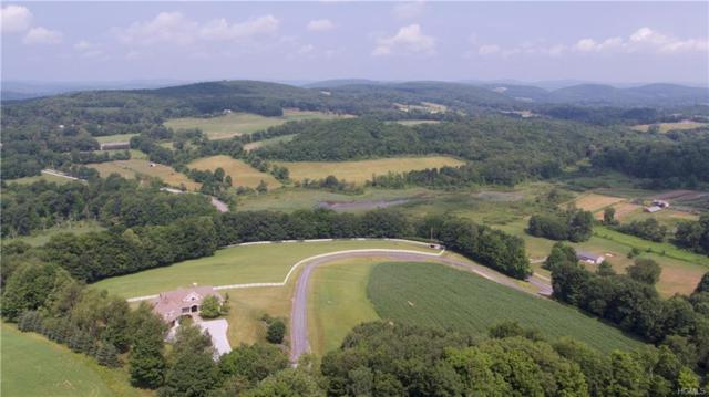 3978 Route 199, Pine Plains, NY 12567 (MLS #4831448) :: William Raveis Baer & McIntosh