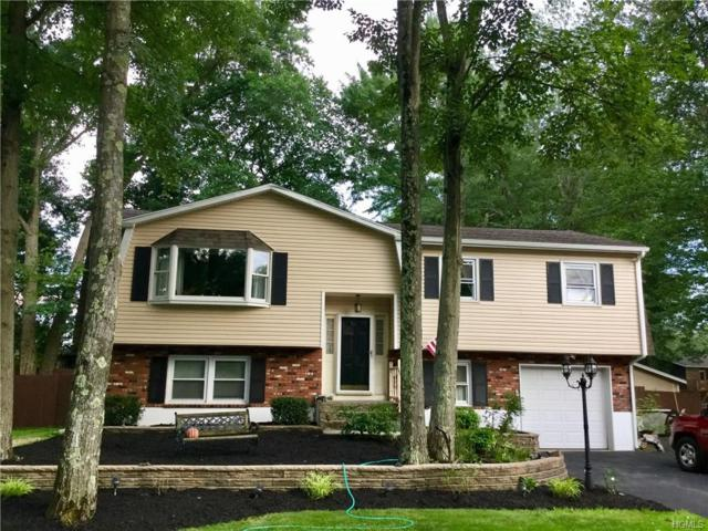 143 Black Bird Lane, Montgomery, NY 12549 (MLS #4832036) :: William Raveis Baer & McIntosh
