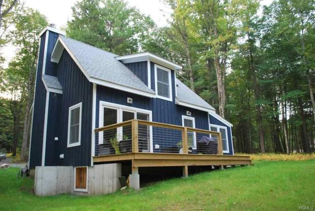 185 Lake Ridge Road, Narrowsburg, NY 12764 (MLS #4838984) :: Mark Boyland Real Estate Team