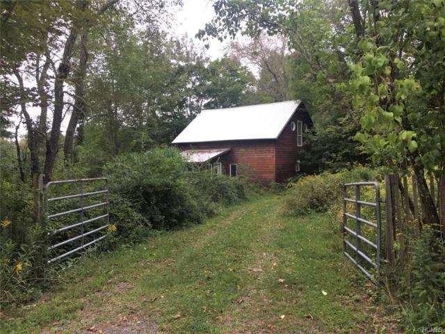 31 Old County Road, Cochecton, NY 12726 (MLS #4843425) :: Mark Boyland Real Estate Team