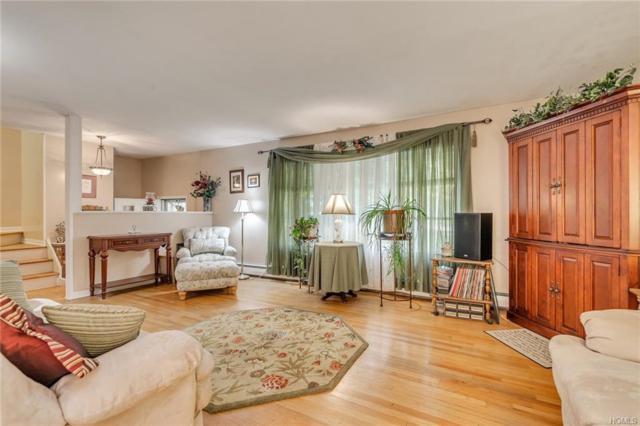11 Julia Drive, Hyde Park, NY 12538 (MLS #4846991) :: Mark Seiden Real Estate Team