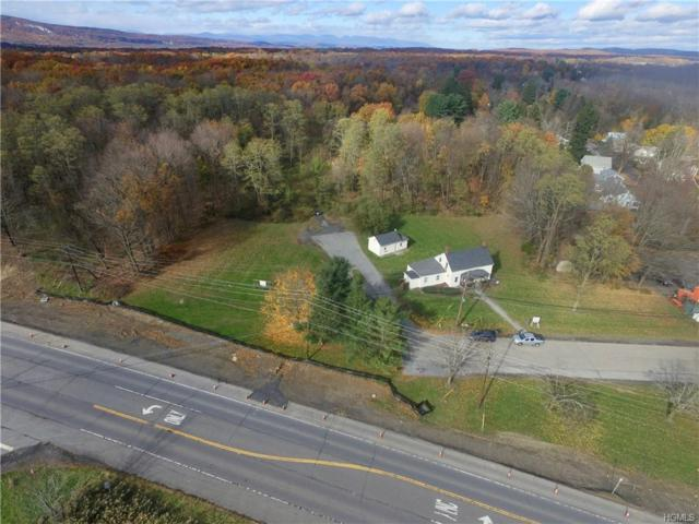 Main Street New Paltz, New Paltz, NY 12561 (MLS #4847906) :: Shares of New York