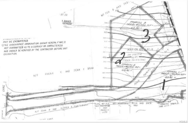 163 Green Lane, Bedford Hills, NY 10507 (MLS #4848609) :: Mark Boyland Real Estate Team