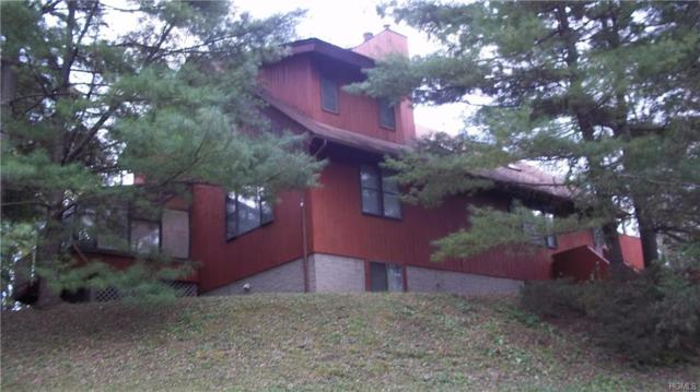 1128 Route 22, Pawling, NY 12564 (MLS #4849507) :: William Raveis Legends Realty Group