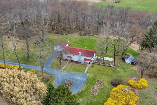 156 Orrs Mills Road, Salisbury Mills, NY 12577 (MLS #4916260) :: William Raveis Legends Realty Group