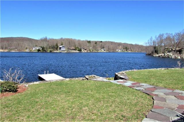 92 Dutchess Lake Court, Holmes, NY 12531 (MLS #4922165) :: William Raveis Legends Realty Group