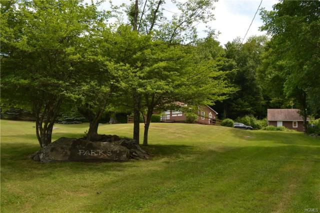 1414 Park Hill Road, Downsville, NY 13755 (MLS #4922979) :: William Raveis Legends Realty Group