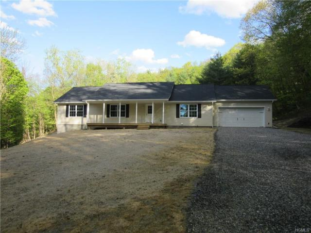 290 Hammond Hill Road, Dover Plains, NY 12522 (MLS #4924888) :: William Raveis Legends Realty Group