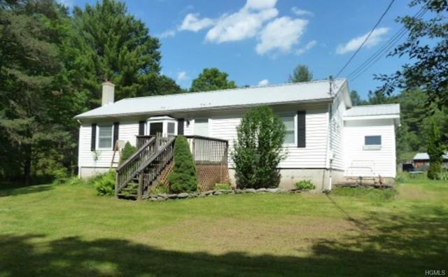 220 Old Cahoonzie Road, Sparrowbush, NY 12780 (MLS #4949446) :: The McGovern Caplicki Team