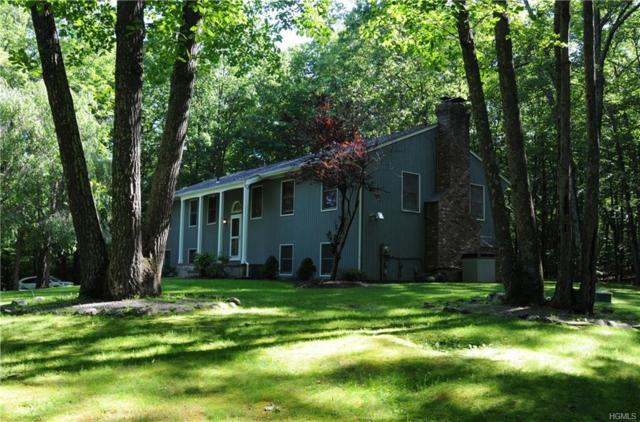 2816 County Route 1, Port Jervis, NY 12771 (MLS #4958115) :: William Raveis Legends Realty Group