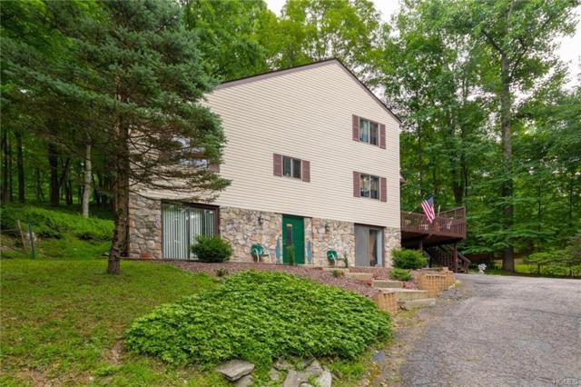22 Laura Lane, Hopewell Junction, NY 12533 (MLS #4975422) :: Mark Boyland Real Estate Team