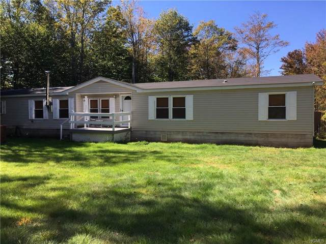 763 Dahlia Road, Livingston Manor, NY 12758 (MLS #5084402) :: William Raveis Baer & McIntosh