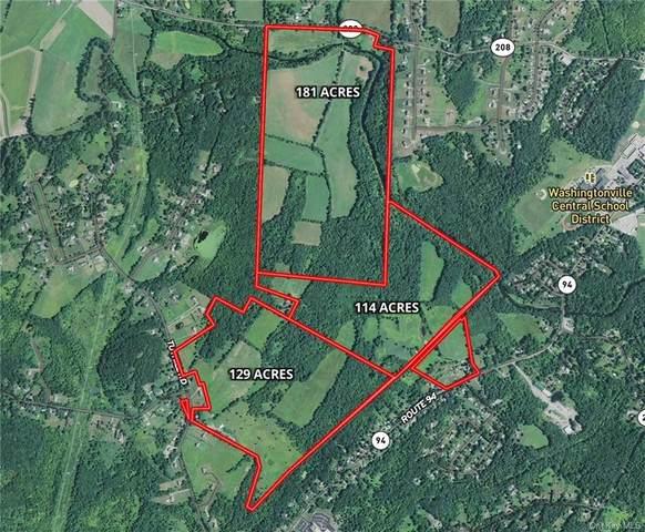 1869 Route 208, Washingtonville, NY 10992 (MLS #H4856026) :: Cronin & Company Real Estate
