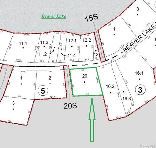 Beaver Lake Road, Rock Hill, NY 12775 (MLS #H4905366) :: William Raveis Baer & McIntosh